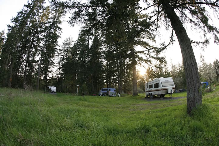 Ecovillage Graveled RV Site w/electric - Dexter - Trailer