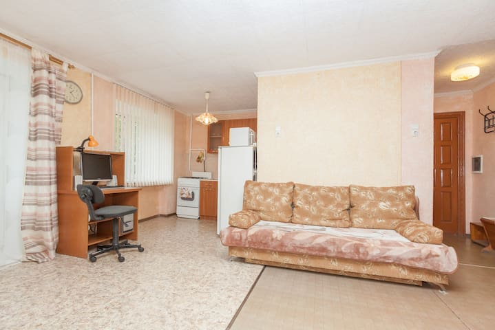The apartment near airport - Yekaterinburg - Appartement