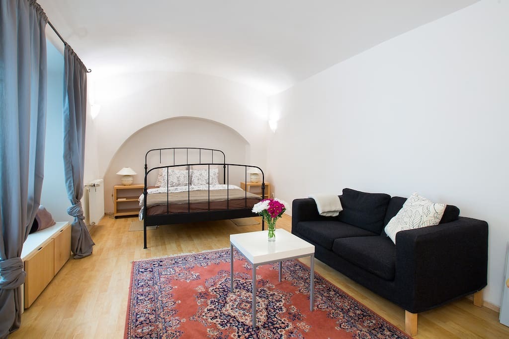 Bedroom has a queen size bed, sofa and some space for you to fill in.