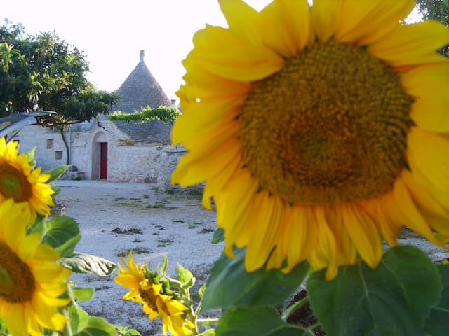 A large tipical rustic house : TRULLI - Ceglie Messapica - Villa