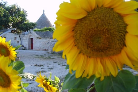 A large tipical rustic house : TRULLI - Ceglie Messapica