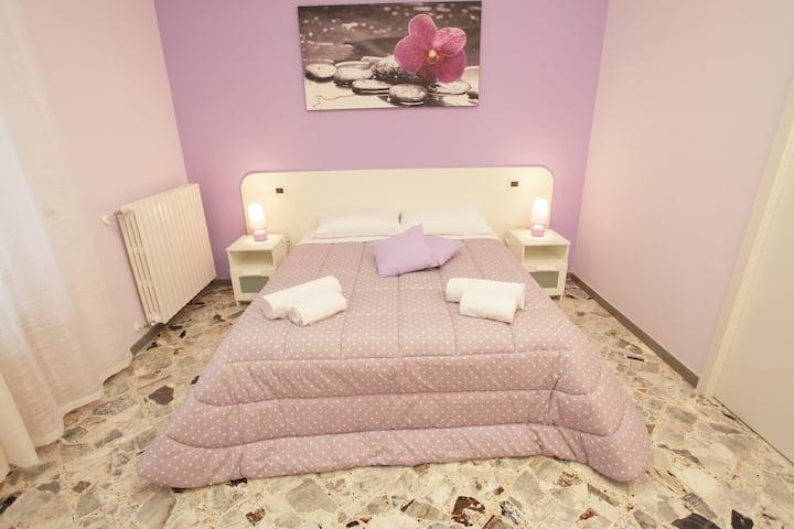 Camera accogliente B&B San Domenico (Orchidea)
