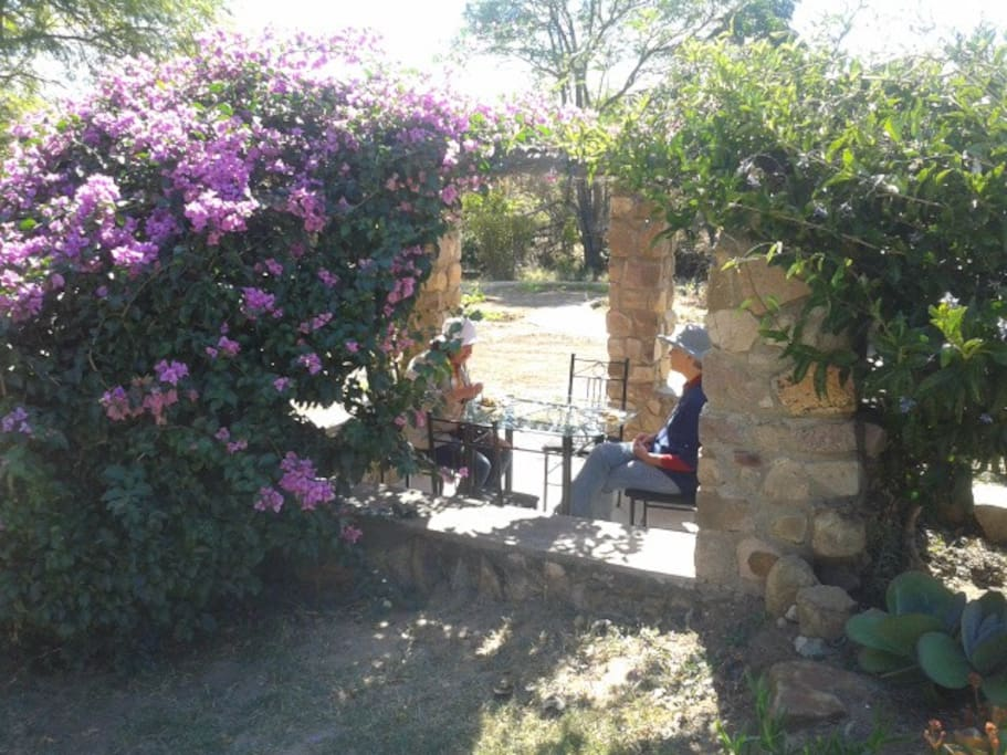 Near town with countryside space bed and breakfasts for for Beds zimbabwe