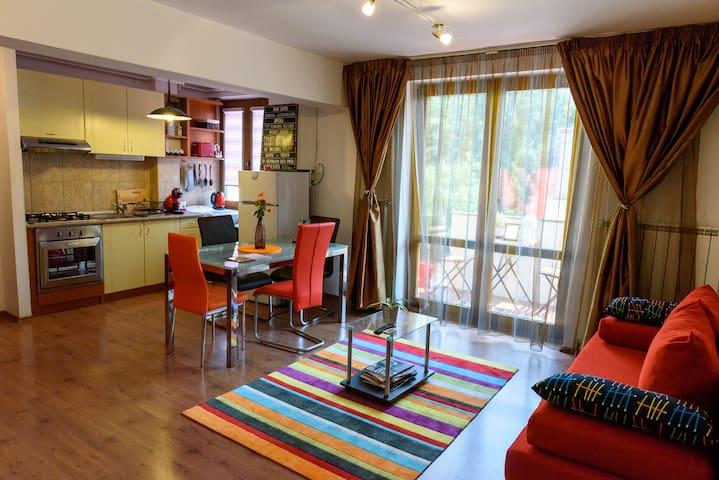 Mures Apartment Central - Târgu Mureș - Appartement