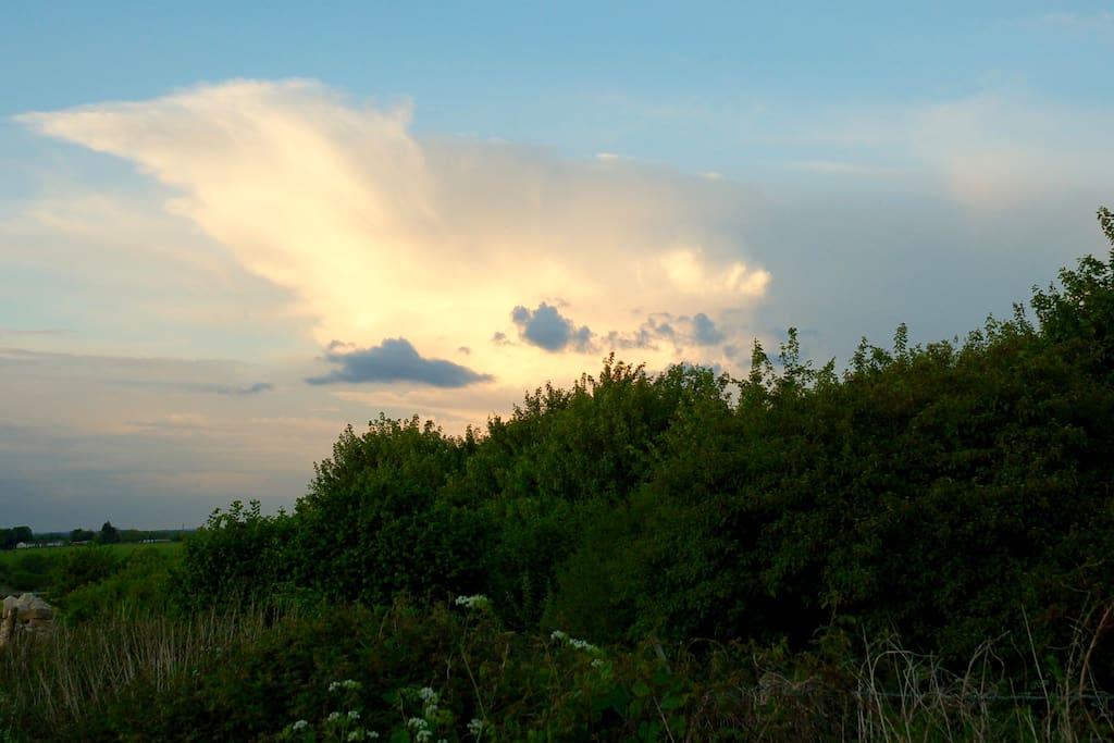 Cloud from garden