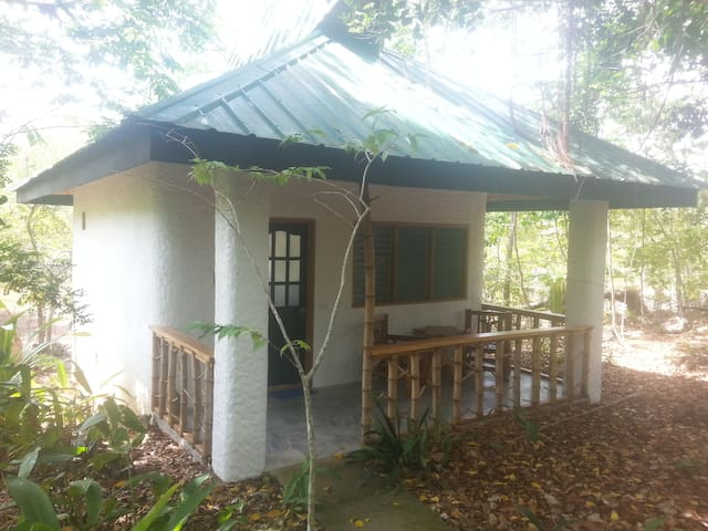 Kims-Garden jungle cottage - Anda - บ้าน
