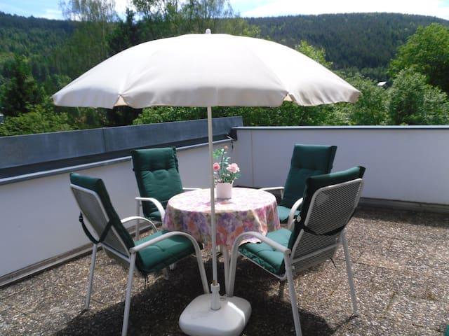 Ferienwohnung Gisela - Bad Wildbad - Daire