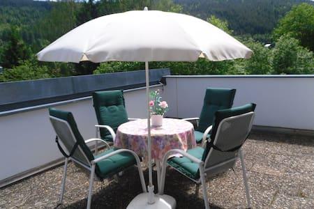 Ferienwohnung Gisela - Bad Wildbad - 公寓