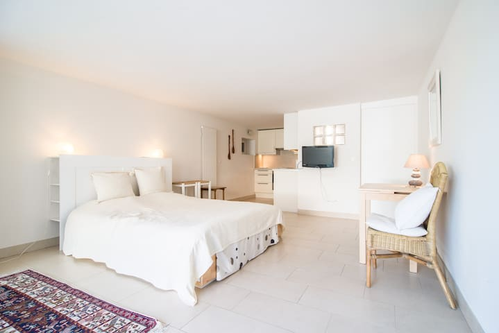 35m square, central, modern studio - Genève - Appartement