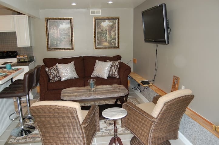 Living Room with pull out queen sleeper sofa