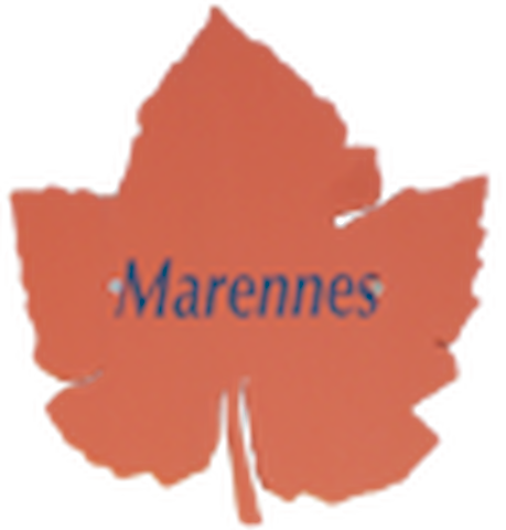 "Appartement ""Marennes"" 4 person"