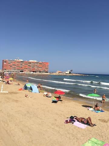 Appartement rénové 50 M de la plage - Torrevieja - Appartement