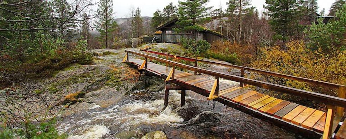 453, Familiehytte på Bortelid - Åseral - Бунгало