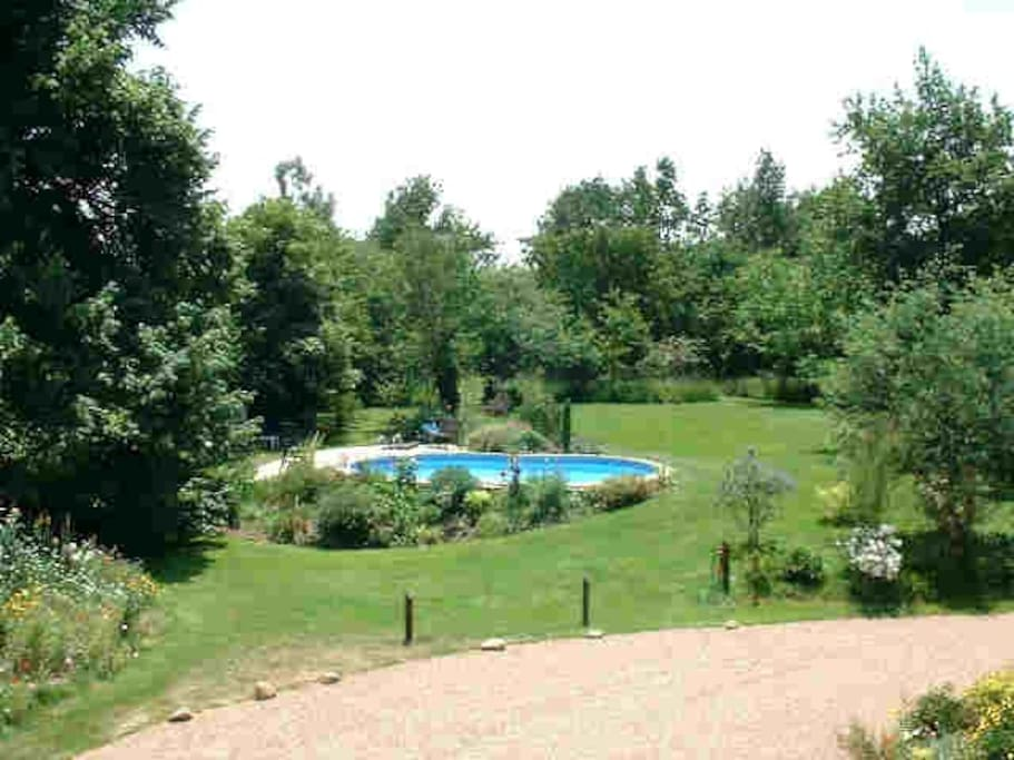 The pool in the large garden