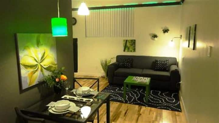 #405 Modern, Stunning APT in Downtown East