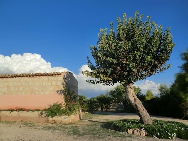 B&B Il Baglio del gelso. Casa Fiore - Santa Croce Camerina - Caucana (Punta Secca) - Bed & Breakfast