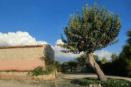 B&B Il Baglio del gelso. Casa Fiore - Santa Croce Camerina - Caucana (Punta Secca)