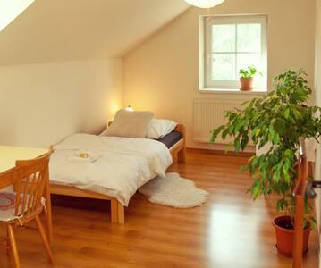 Comfortable room in Brtnice