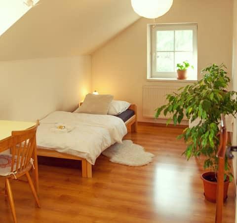 Brtniceの快適な客室