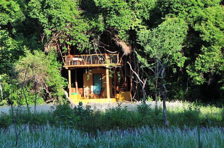 Tree House Living in the Jungle Close to Sigiriya