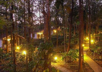 TGC:M30-Cottages Amidst Mudumalai Forest(Food Inc)