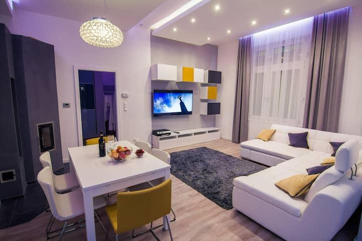 Exclusive 2BR Apartment near Castle