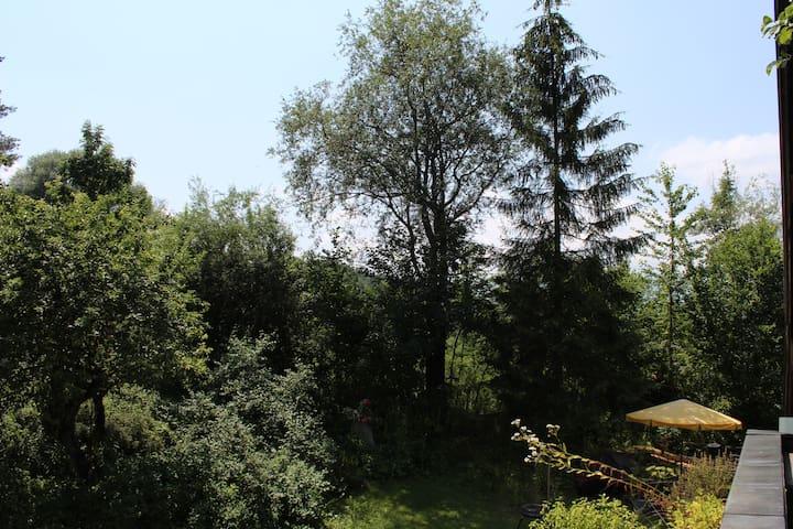 Wohnung am Murnauer Moos - Murnau am Staffelsee - Apartment