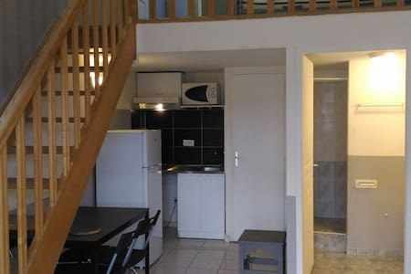 T2BIS EASYLOFT CHAPONNAY - Chaponnay - 公寓