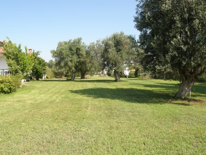 Kriopigi Family Homes with Big Yard