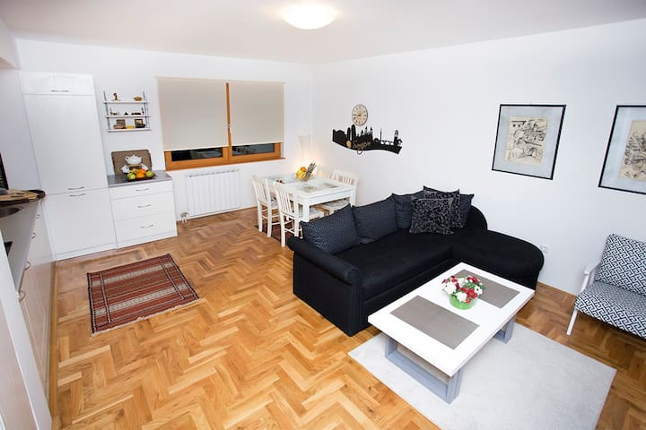 Apartm. Sarac-Cathedral City Center - Sarajevo - Appartement