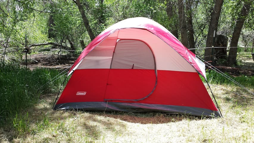Tent w double and twin beds - Salida - Haus