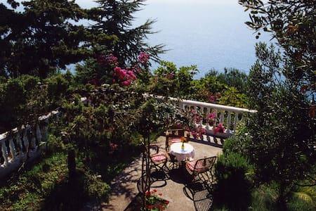 Villa Jadran, Podaca, Makarska Riviera Croatia - Podaca - 別墅