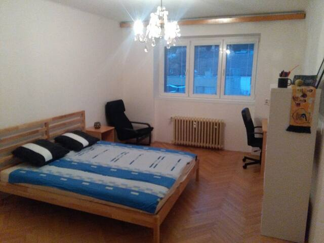 Big comfortable room near the city center!