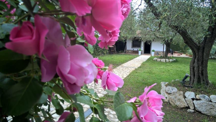 Villa charme Tenuta Montelibretti. - Montelibretti - Casa