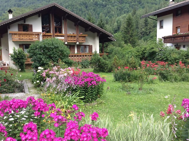 B&B LaDina Cencenighe AG Dolomiti  BL  Veneto (2) - Cencenighe Agordino - Bed & Breakfast