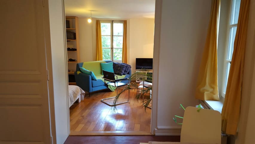 Logement de charme à Carouge