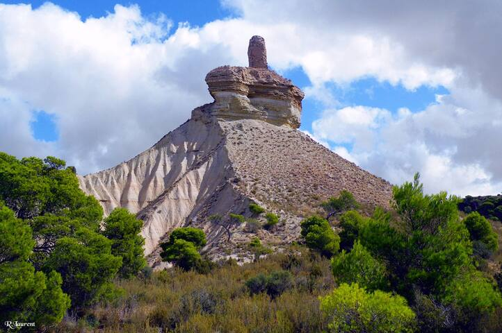 La Bardena Blanca II - Casa Rural - Arguedas - Hus