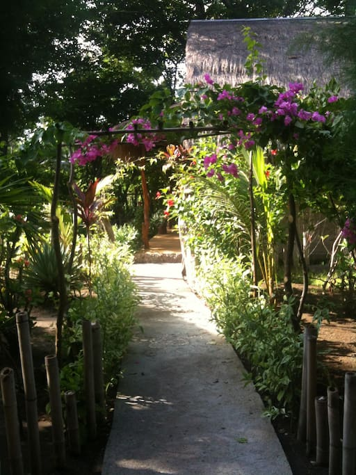Garden path leading to the Villa.