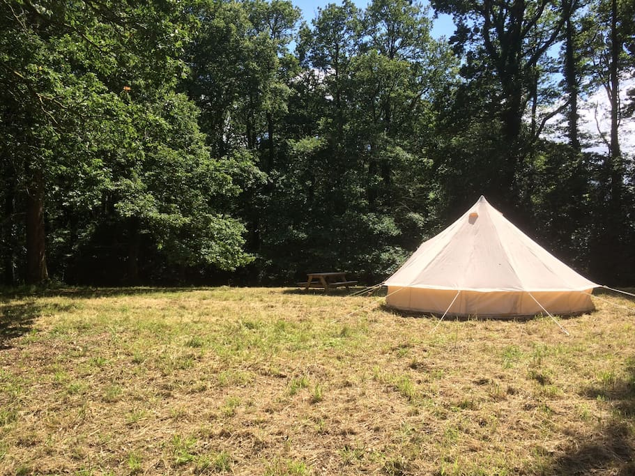 ~Enjoy our beautiful bell tent in our wood