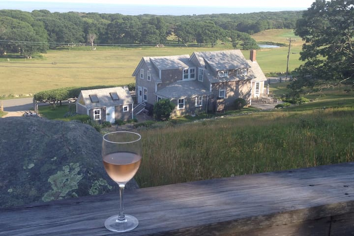 Everyone's Favorite Island View! - Chilmark - House