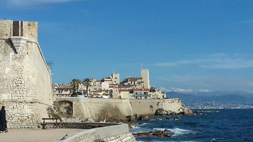 OLD ANTIBES Flat A/C 32m2 + Wifi Picasso Safranier