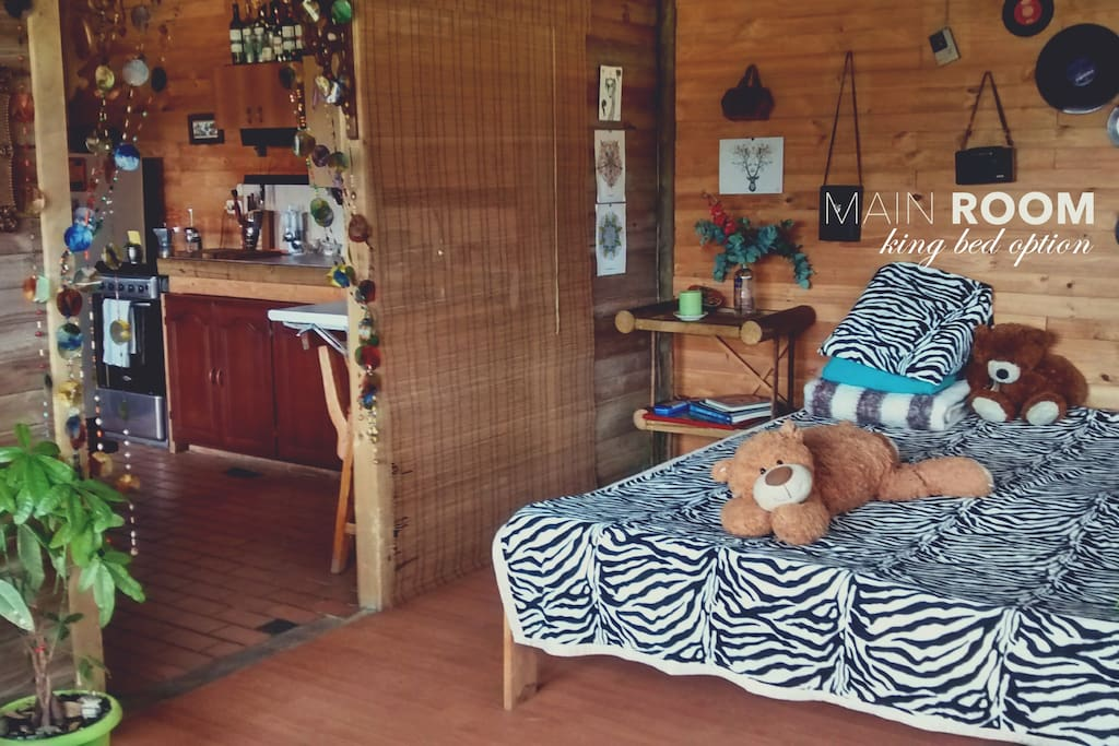 Main Room - king bed option