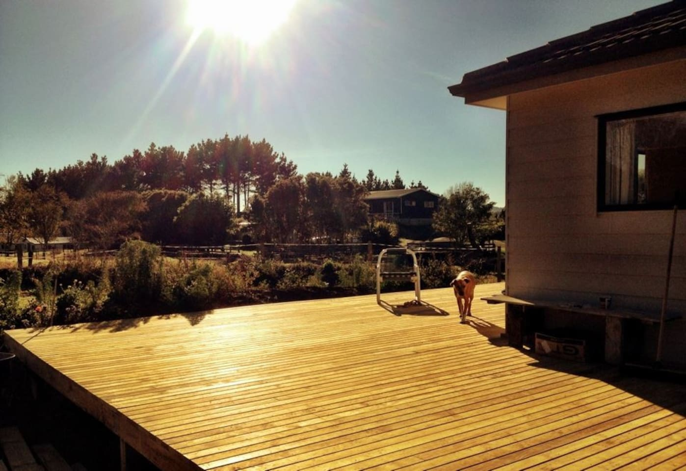 Full all day sun on the large deck