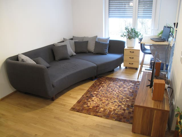 Lovely and spacious flat welcomes you to Tübingen