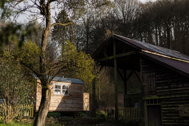 Tranquil, cosy, rural shepherds hut - Wigmore - Hut