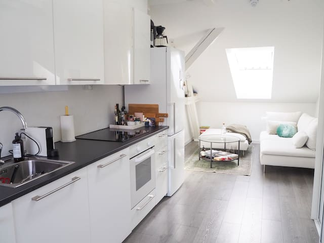 Lovely loft in central Oslo - close to everything