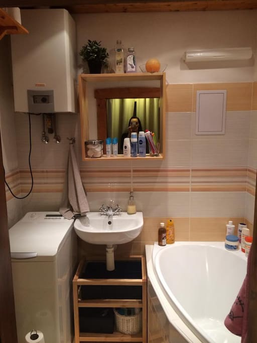 Bathroom combined with WC