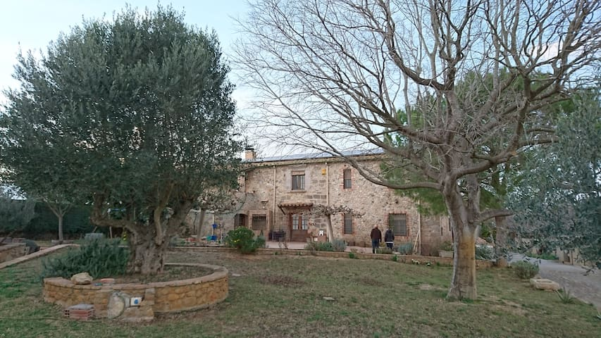 House in the Alt Empordà with patio - Siurana - House