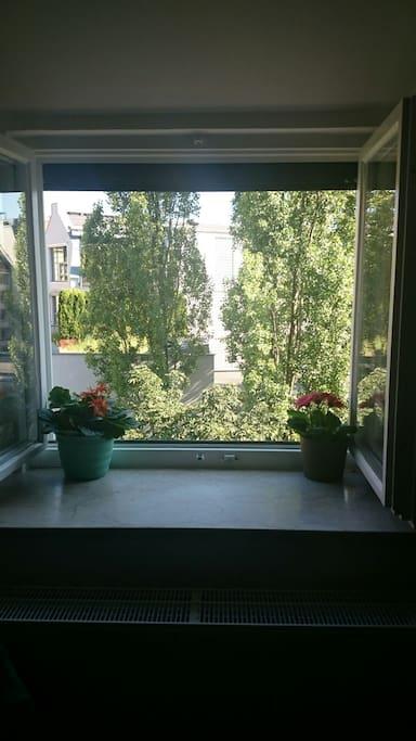 Blick zum ruhigen Innenhof