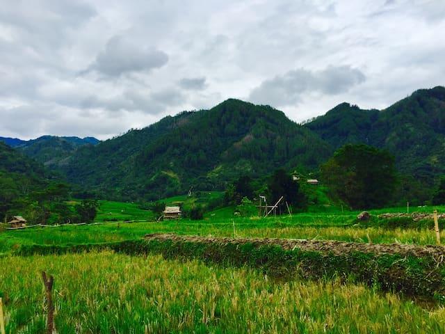 House in Toraja Country side - Makale Toraja